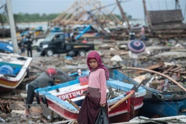 Nueva Zelanda ayuda a Indonesia en la superacion de consecuencias de tsunami hinh anh 1