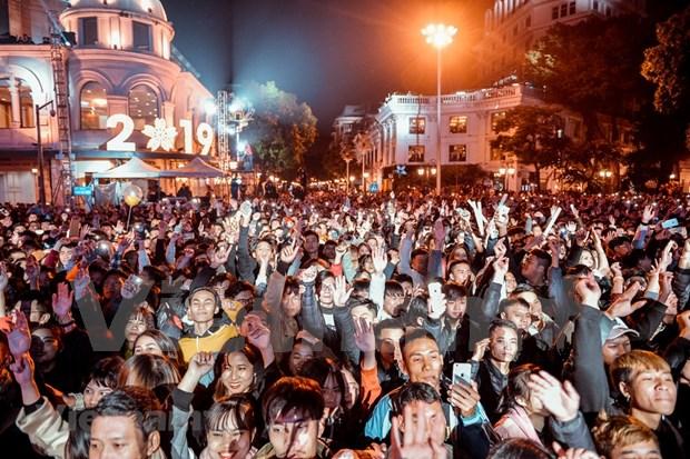 Celebran el Ano Nuevo 2019 en ciudades vietnamitas hinh anh 1