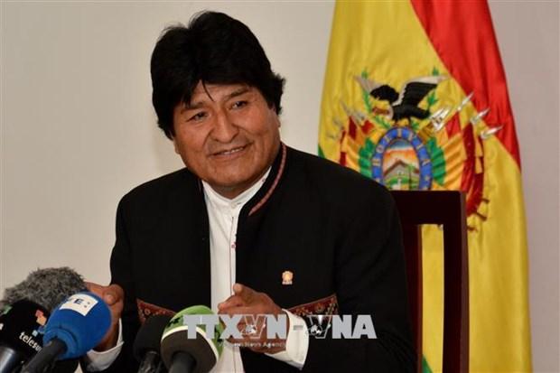 Presidente de Bolivia aspira a ampliar nexos economicos con Vietnam hinh anh 1