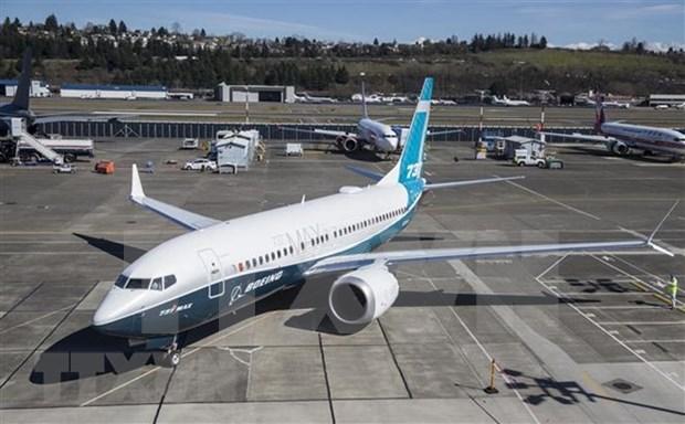 Lion Air de Indonesia concluye rastreo de segunda caja negra de avion accidentado hinh anh 1