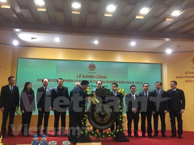 Buenas perspectivas para el mercado de valores de Vietnam en 2019 hinh anh 1