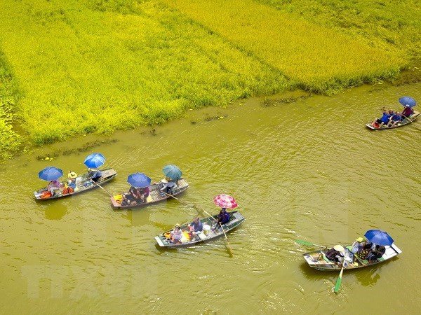 Crece numero de turistas a provincia vietnamita de Ninh Binh hinh anh 1