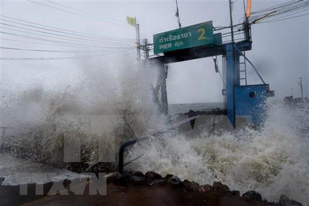 Al menos cinco muertos por tormenta tropical Pabuk en Tailandia hinh anh 1