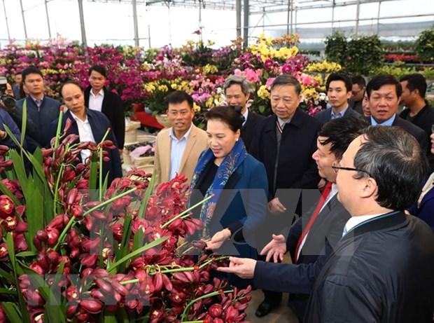 Lider parlamentaria de Vietnam visita aldea de nueva ruralidad en provincia de Hung Yen hinh anh 1