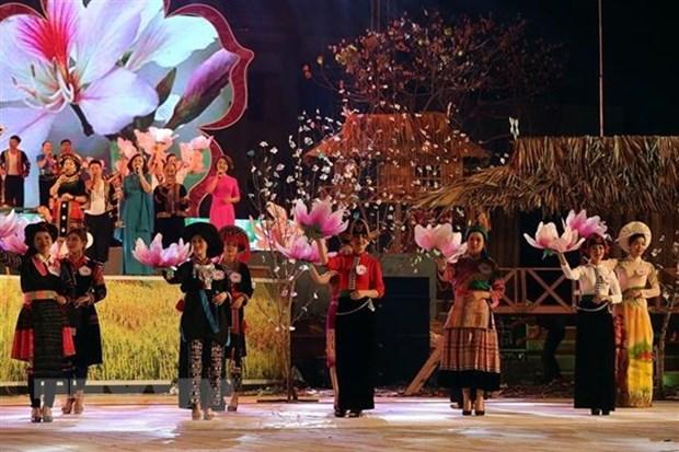 Celebraran en Vietnam festival de Flor de Bauhinia blanca hinh anh 1