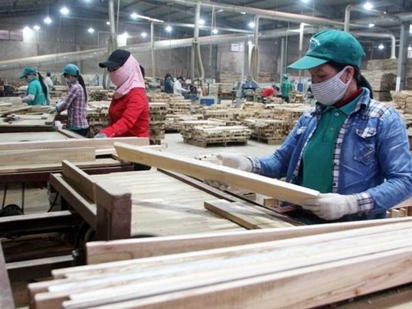 Oportunidades para exportadores vietnamitas en el mercado de Camboya hinh anh 1