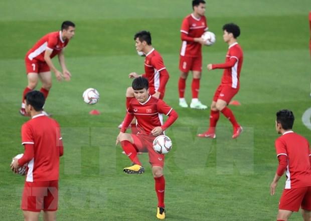 FIFA reconoce racha invicta mas larga en el mundo del equipo de futbol vietnamita hinh anh 1