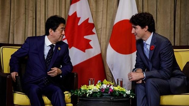 Canada y Japon discuten medidas para promover oportunidades brindadas por CPTPP hinh anh 1