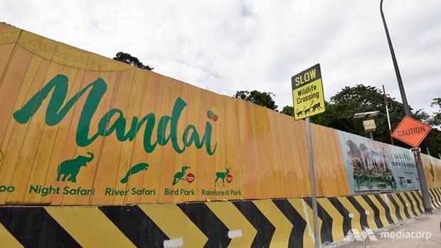Proyecto de ecoturismo provoca contradicciones en Singapur hinh anh 1