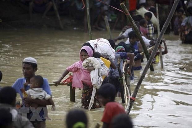 ASEAN busca solucion integral para asunto de los rohingya en Myanmar hinh anh 1