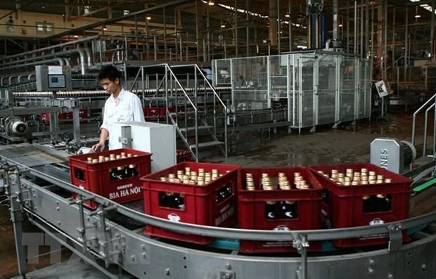 Mas de 700 mil empresas operan en Vietnam hinh anh 1