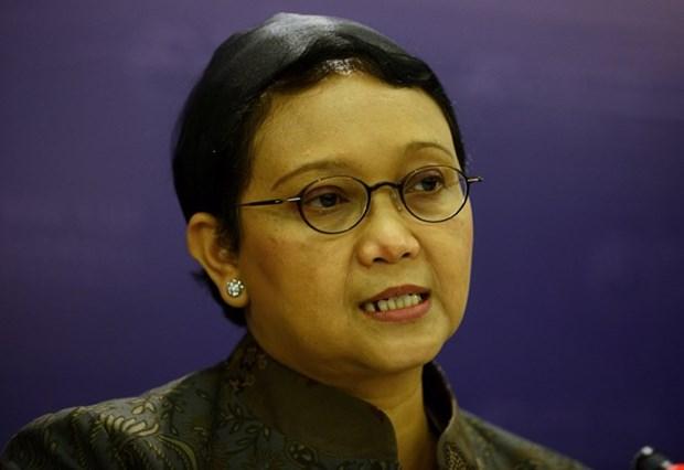 Indonesia anuncia las prioridades diplomaticas del 2019 hinh anh 1