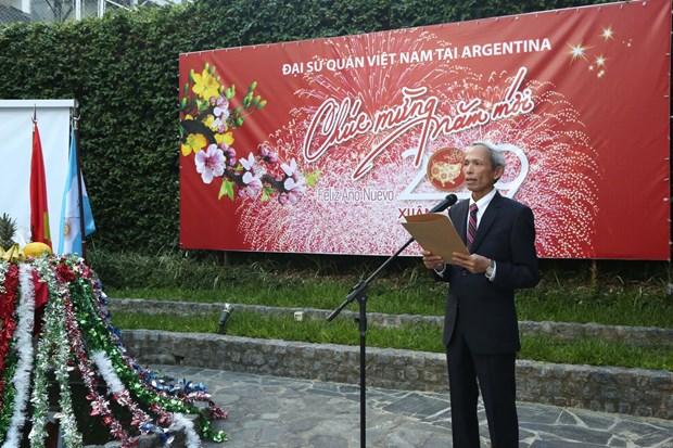 Vietnamitas en Argentina celebran fiesta del Ano Nuevo Lunar 2019 hinh anh 1