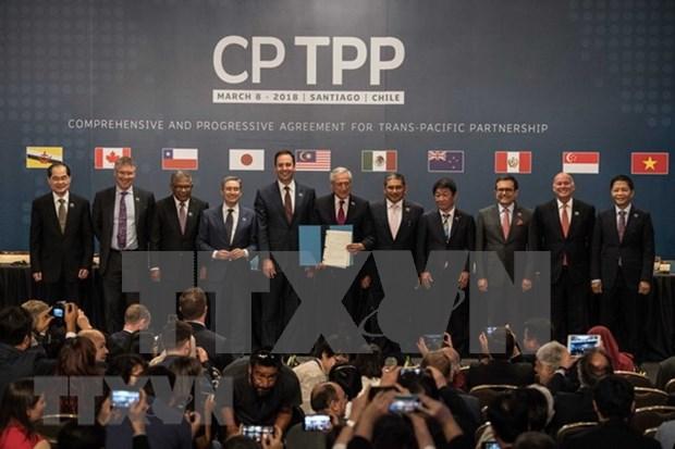 Empresas vietnamitas listas a aprovechar CPTPP hinh anh 1