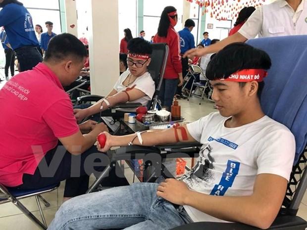 """Donan miles de unidades de sangre en Vietnam durante """"Domingo Rojo"""" hinh anh 1"""
