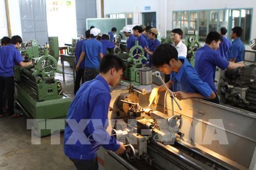 Vietnam planea elevar tasa de trabajadores capacitados al 62 por ciento hinh anh 1