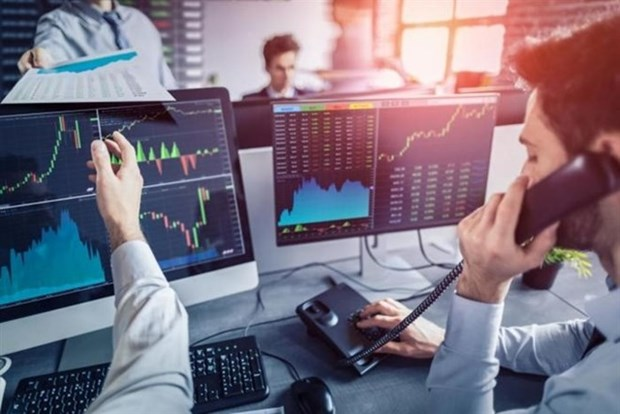 2018: Ano exitoso para mercado bursatil de Vietnam hinh anh 1