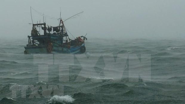 Pide Vietnam ayuda a paises vecinos en la busqueda de pescadores desaparecidos hinh anh 1