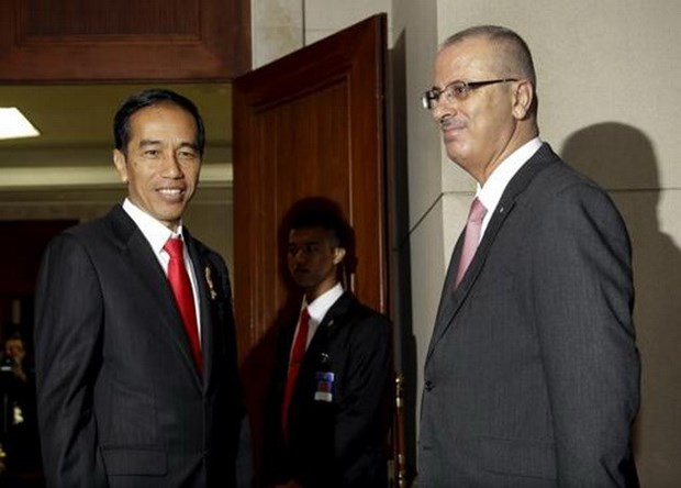 Promete Indonesia impulsar los derechos de los palestinos en Consejo de Seguridad de ONU hinh anh 1