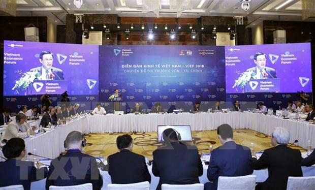 Foro Economico de Vietnam abarca asunto de seguridad energetica hinh anh 1