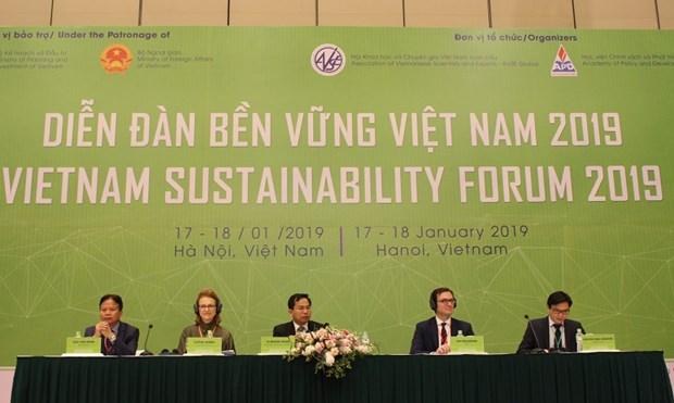 Analizan en Vietnam medidas para promover el desarrollo sostenible hinh anh 1