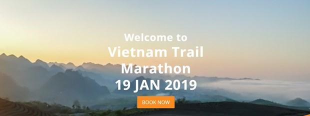 Participaran mil 900 deportistas en maraton internacional en Vietnam hinh anh 1