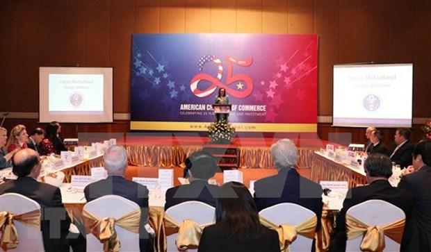 Impulsan Vietnam y Estados Unidos la cooperacion economica hinh anh 1