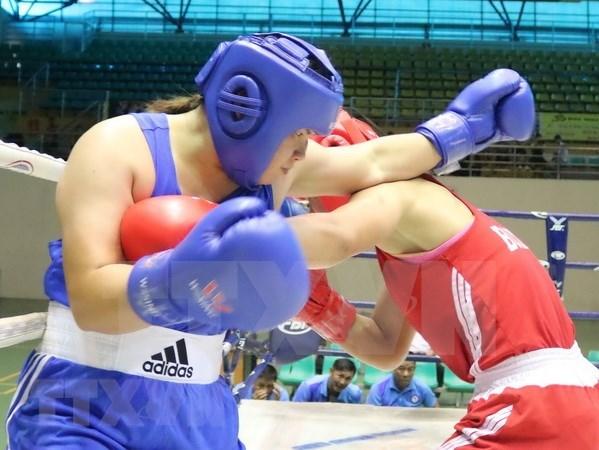 Planea Vietnam desarrollar el boxeo profesional hinh anh 1
