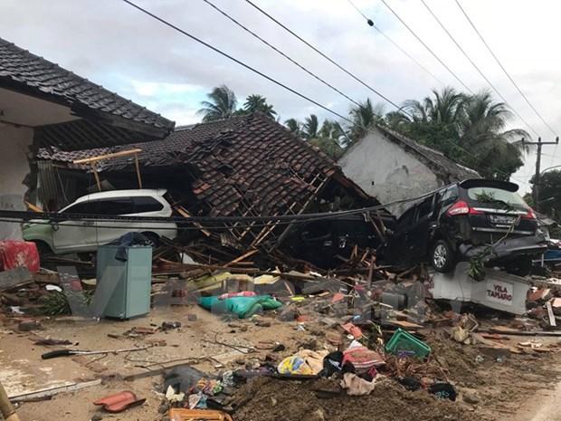 Terremoto sacude provincia indonesia de Sumbawa hinh anh 1