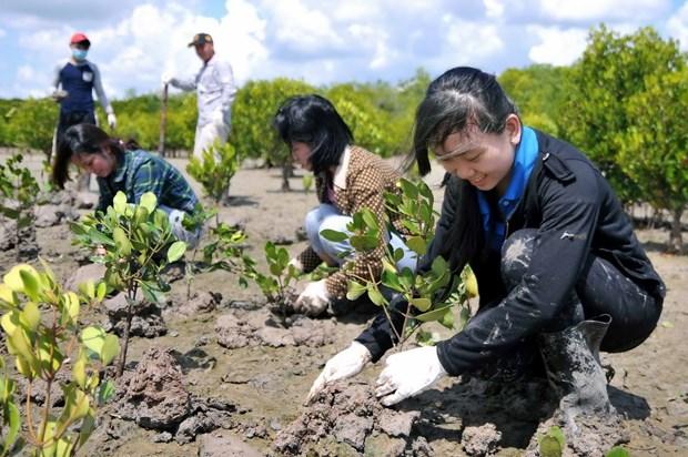 Destinaran fondo millonario a proyectos de emprendedores verdes hinh anh 1