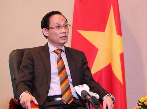 Aprecia comunidad internacional esfuerzos de Vietnam para proteger derechos humanos hinh anh 1