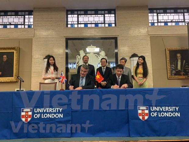 Firman Vietnam y Reino Unido decenas de documentos de cooperacion educativa hinh anh 1