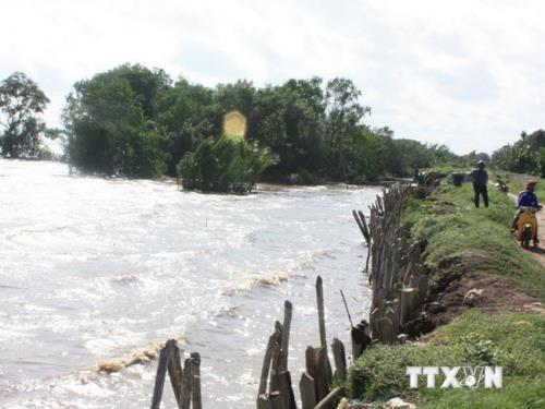 Recompensara Vietnam con un millon de dolares a iniciativas de respuesta al cambio climatico hinh anh 1