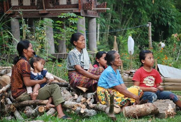 Aspira Indonesia a disminuir el indice de pobreza en 2019 hinh anh 1