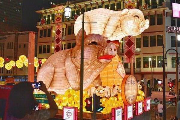 Celebran en Singapur diversas actividades culturales y artisticas por motivo de Ano Nuevo Lunar hinh anh 1