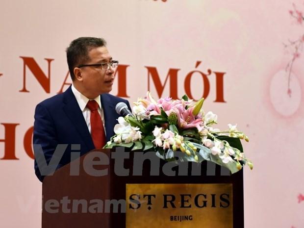 Celebra comunidad vietnamita en China encuentro en saludo a Tet 2019 hinh anh 1