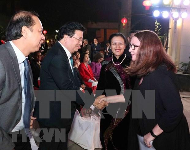 Otorga Vietnam importancia a la diplomacia de pueblo a pueblo, afirma su vicepremier hinh anh 1