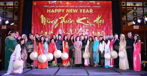 Los vietnamitas residentes en exterior son importantes recursos de la Patria hinh anh 1