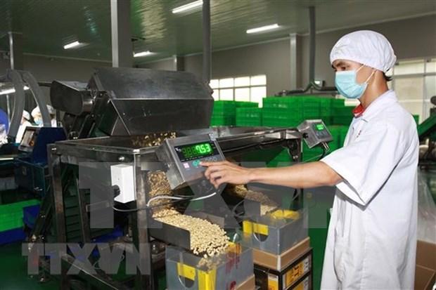 Industria de bebidas y procesamiento alimentario de Vietnam sigue tendencia alcista hinh anh 1