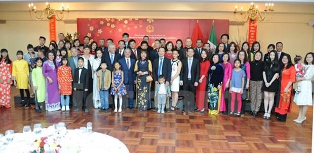Celebran vietnamitas residentes en el extranjero actividades por Ano Nuevo Lunar hinh anh 1