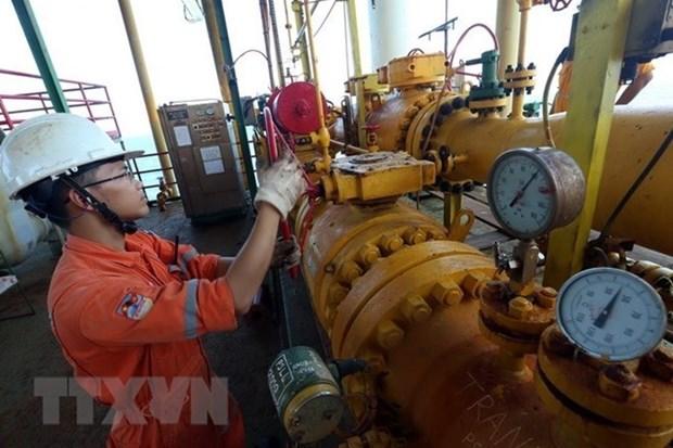 Sobrecumple PetroVietnam metas de explotacion y produccion en enero hinh anh 1