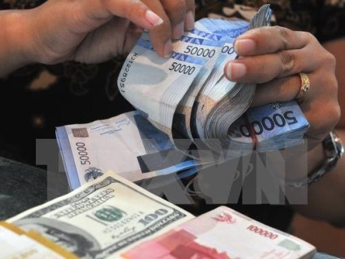 Capto Indonesia casi 28 mil millones de dolares en 2018 hinh anh 1