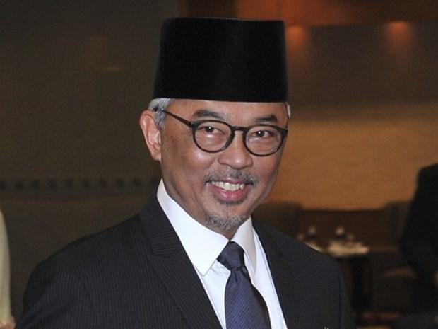 Vietnam felicita a nuevo rey de Malasia hinh anh 1