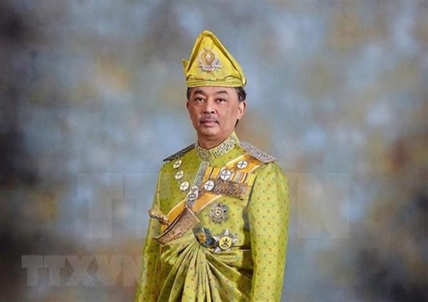 Proclaman al sultan de Pahang como nuevo rey de Malasia hinh anh 1