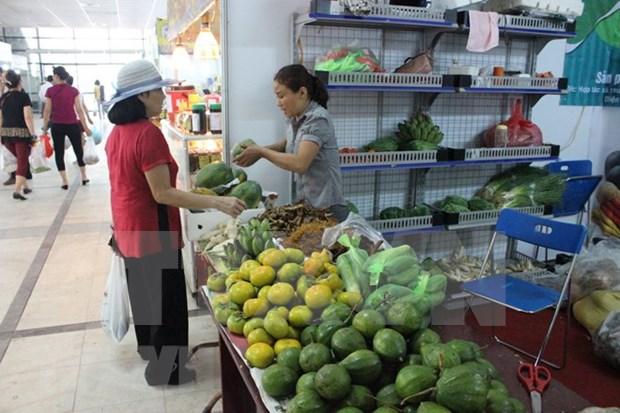 Exploran empresas japonesas oportunidades de inversion en agricultura de alta tecnologia en Vietnam hinh anh 1