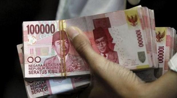 Indonesia goza de alto crecimiento economico en 2018, segun Reuters hinh anh 1