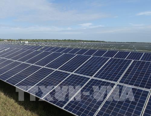 Evaluan el futuro de la energia renovable como alternativa para el sector energetico de Vietnam hinh anh 1