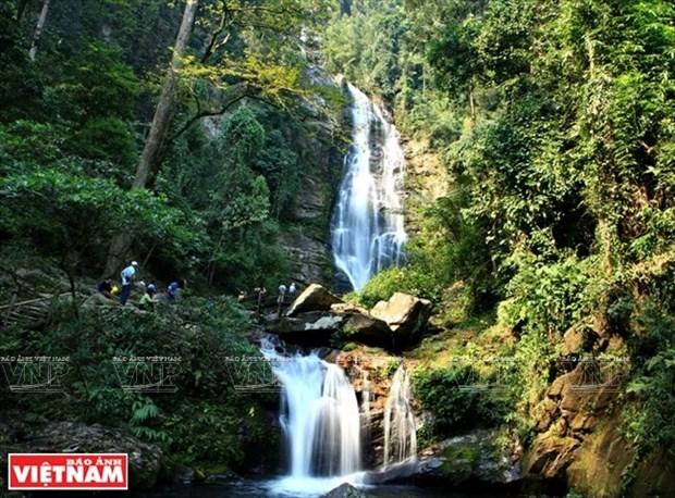 Parque Nacional Pu Mat en provincia centro vietnamita de Nghe An hinh anh 2