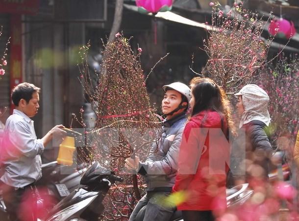 Mercado de flores en la calle Hang Luoc hinh anh 1