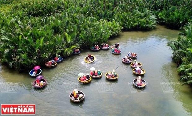 Cam Thanh, tierra de las palmas de agua hinh anh 1